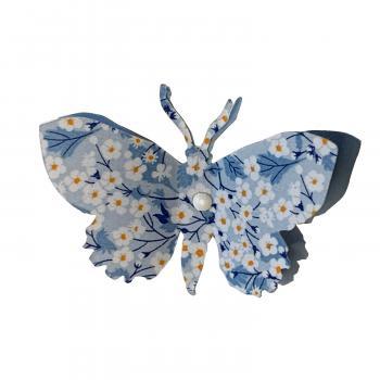 zoommitsibleupapillon
