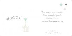 echantillon_faire_part_d-adoption_étoile_de_chine_bleu-1