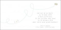 echantillon_faire_part_d-adoption_avion_bleu-1