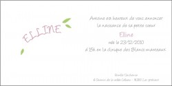 echantillon_faire_part_de_naissance_les_bêtises-1