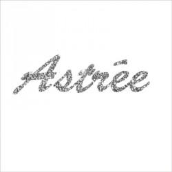 pêle_mêle_danseuse_étoile_aux_chaussons_de_danse_pailleté_personnalisable-4
