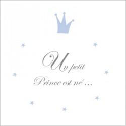 Echantillon Faire part de naissance un petit Prince est né