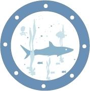 Sticker hublot Requin